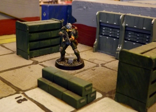 Fig in Storage Area with some permanent resin crates and lockers.